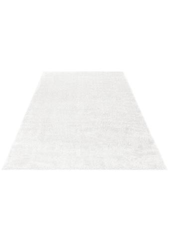 my home Hochflor-Teppich »Mikro Soft Ideal«, rechteckig, 30 mm Höhe, Besonders weich... kaufen
