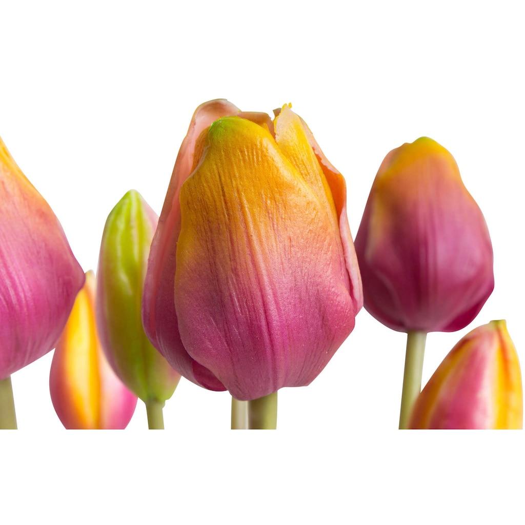 Botanic-Haus Kunstblume »Tulpenbündel real Touch«