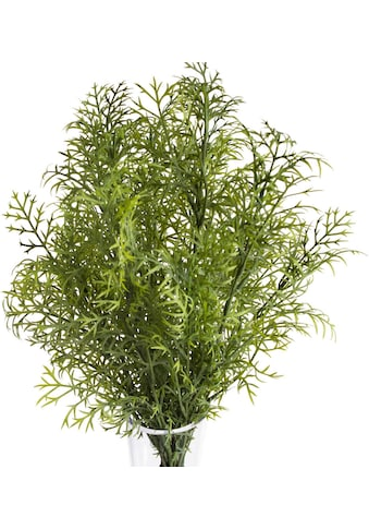 Botanic-Haus Künstliche Zimmerpflanze »Wildkräuterbusch« kaufen