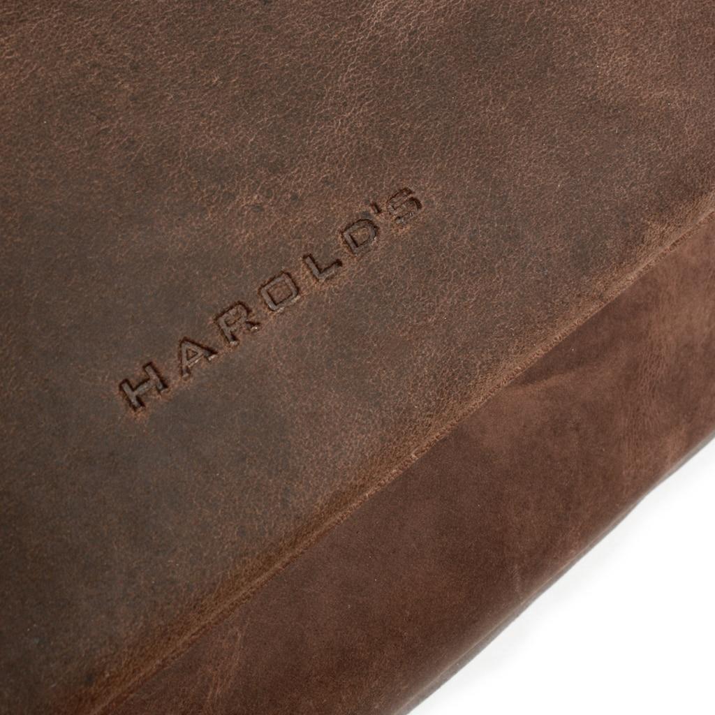 Harold's Messenger Bag »ANTIC«