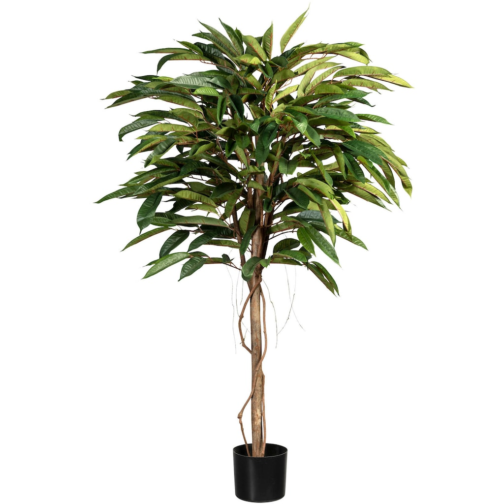 Creativ green Kunstbaum »Ficus Alii de Luxe«