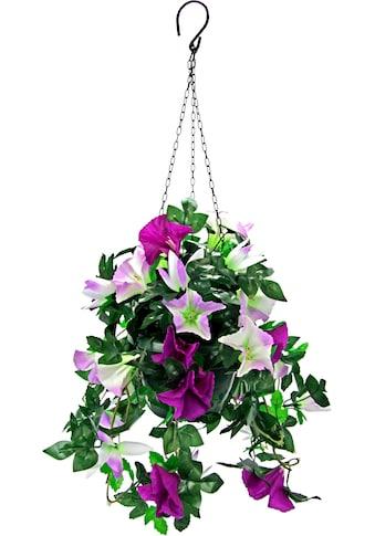 I.GE.A. Kunstpflanze »Hängeampel Petunien« kaufen