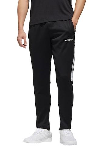 adidas Performance Jogginghose »M SERENO PT IW« kaufen
