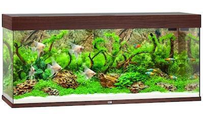 JUWEL AQUARIEN Aquarium »Rio 240 LED«, 240 Liter, BxTxH: 121x41x55 cm , in versch. Farben kaufen