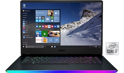 MSI Gaming-Notebook »GE66 Raider 10UG-261«, (1000 GB SSD) kaufen