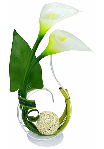 I.GE.A. Kunstpflanze »Calla« (1 Stück) kaufen