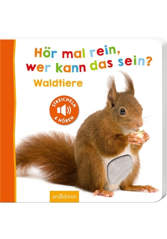 Buch »Hör mal rein, wer kann das sein? - Waldtiere / DIVERSE« kaufen