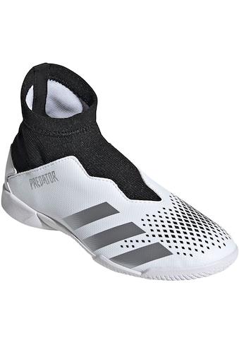 adidas Performance Fußballschuh »Predator 20.3 LL IN« kaufen