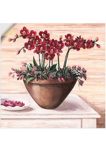 Artland Wandbild »Orchideen in Bordeaux«, Blumen, (1 St.), in vielen Größen &... kaufen