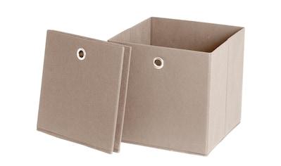 Schildmeyer Faltbox »Box« kaufen
