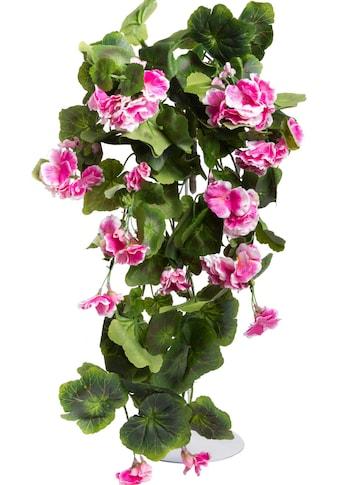 Botanic-Haus Kunstblume »Geranienhängebusch« kaufen