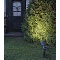 STAR TRADING LED Gartenstrahler »Fixture«, LED-Modul