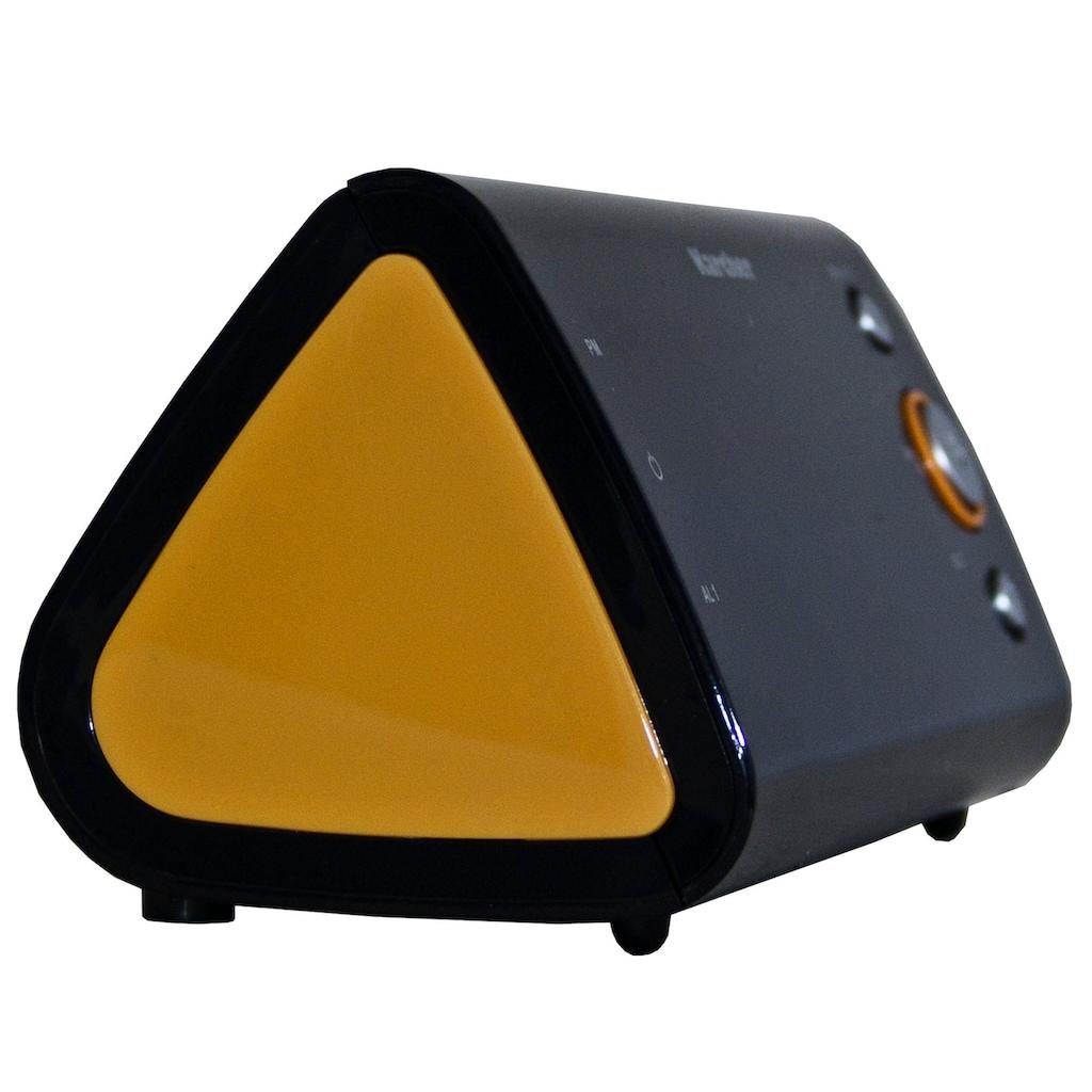 Karcher Radiowecker »UR 1040-O«