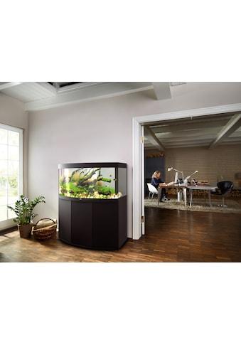 JUWEL AQUARIEN Aquarien-Set »Vision 260 LED + SBX Vision 260«, BxTxH: 121x46x144 cm,... kaufen