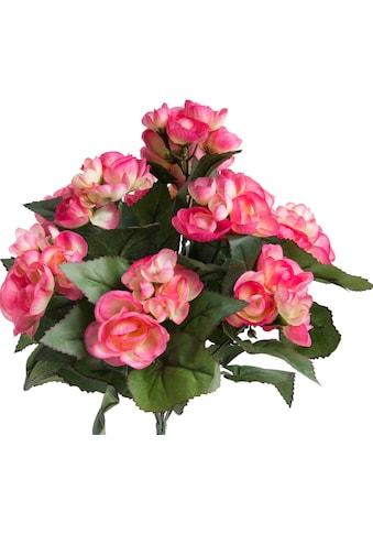 Botanic-Haus Kunstblume »Begonie mit 9 Stielen« kaufen