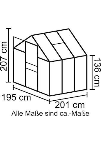 VITAVIA Sparset: Gewächshaus »Apollo 3800«, BxTxH: 195x199x207 cm, 4 mm kaufen