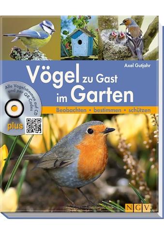 Buch »Vögel zu Gast im Garten / Axel Gutjahr« kaufen