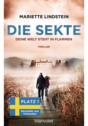 Buch »Die Sekte - Deine Welt steht in Flammen / Mariette Lindstein, Kerstin Schöps« kaufen