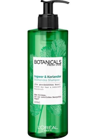 BOTANICALS Haarshampoo »Ingwer und Koriander«, stärkend kaufen