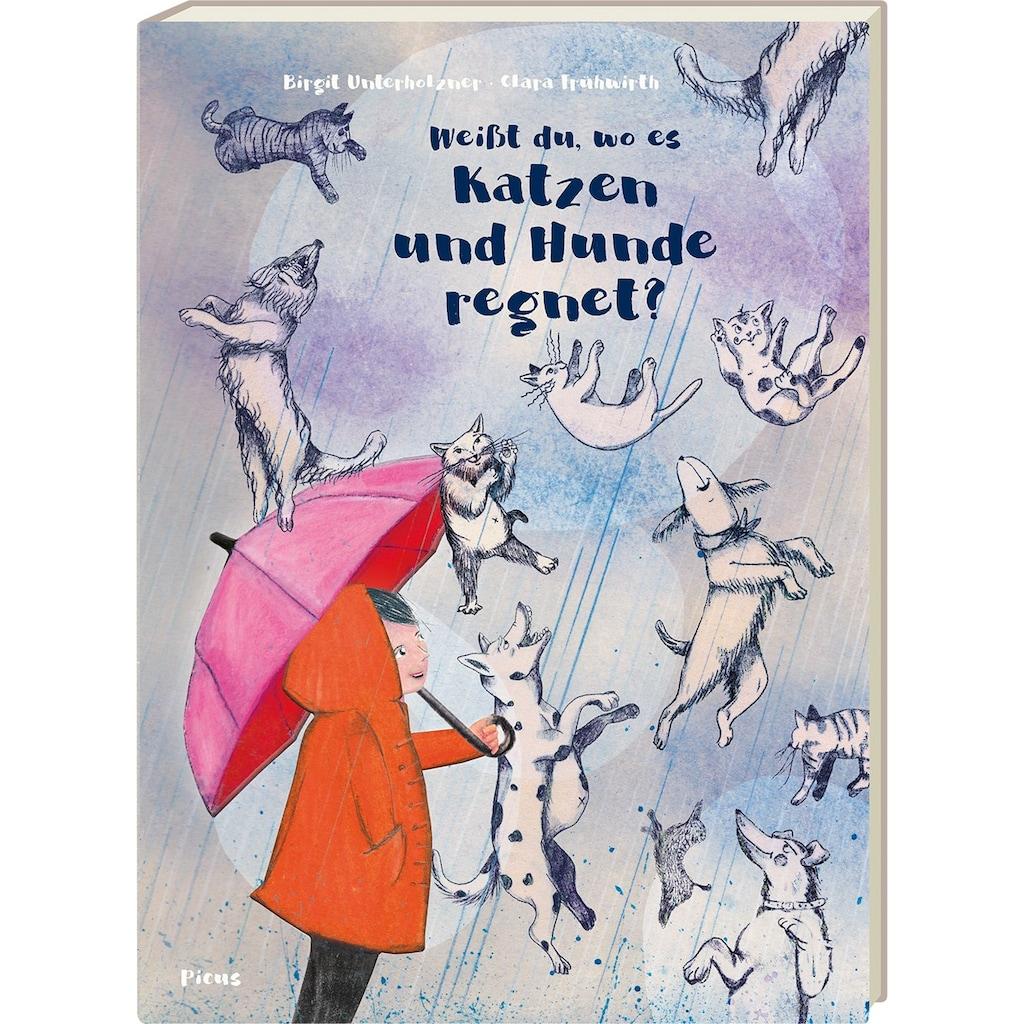 Buch »Weißt du, wo es Katzen und Hunde regnet? / Birgit Unterholzner, Clara Frühwirth«
