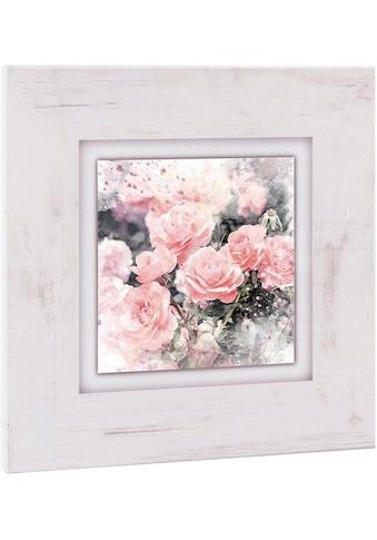 Home affaire Holzbild »Wilde Rosen«, 40/40 cm kaufen