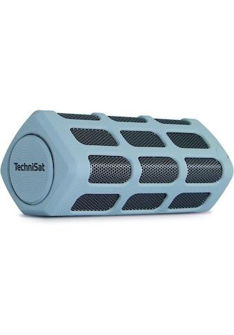 TechniSat Bluetooth - Lautsprecher mit Powerbank »BLUSPEAKER OD 300 grau« kaufen