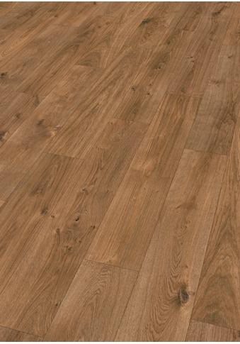 EGGER Packung: Designboden »EHC002 Jacksonville Eiche dunkel«, 1292 x 193, Stärke: 8 mm kaufen