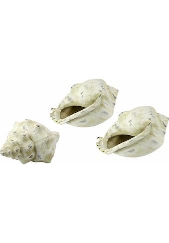 I.GE.A. Dekoobjekt »Keramik-Muschel« kaufen