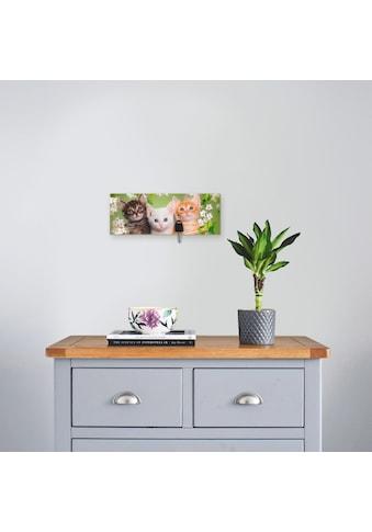 Artland Schlüsselbrett »Katzen sitzen in einem Korb« kaufen