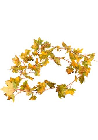 Botanic-Haus Künstliche Zimmerpflanze »Ahornblättergirland« kaufen
