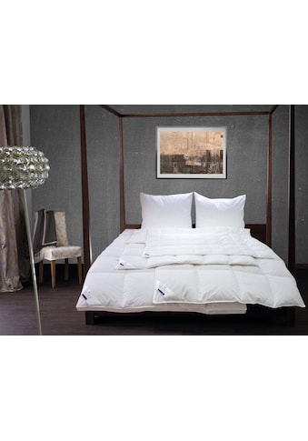 Daunenbettdecke »Enisa 80 Mono« kaufen