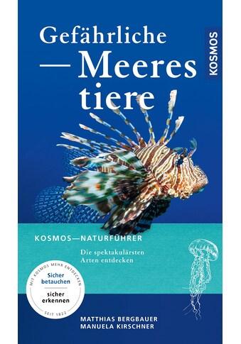 Buch »Gefährliche Meerestiere / Matthias Bergbauer, Manuela Kirschner« kaufen