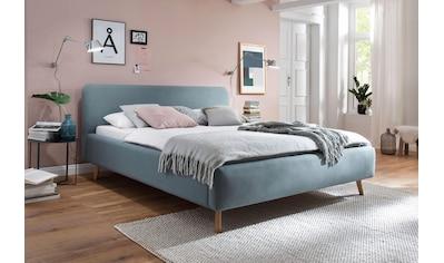 meise.möbel Polsterbett, Skandinavien Landhausstil kaufen