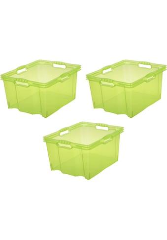 keeeper Aufbewahrungsbox »franz« (Set, 3 Stück) kaufen