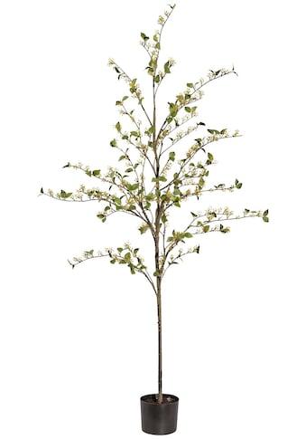 Creativ green Kunstpflanze »Viburnum«, im Kunststofftopf kaufen