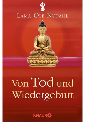 Buch »Von Tod und Wiedergeburt / Lama Ole Nydahl« kaufen