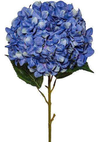 Creativ green Kunstblume »Hortensie XXL« (1 Stück) kaufen