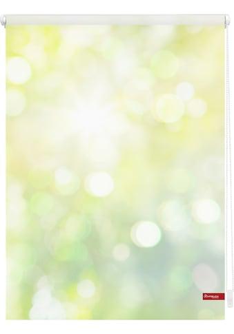 LICHTBLICK Seitenzugrollo »Klemmfix Motiv Lichtspiel«, Lichtschutz, ohne Bohren, freihängend, bedruckt kaufen