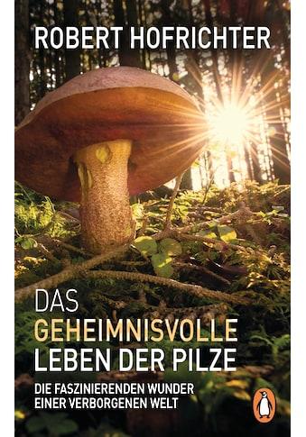 Buch »Das geheimnisvolle Leben der Pilze / Robert Hofrichter« kaufen