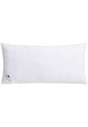Traumecht Microfaserkissen »Melly«, Füllung: Polyesterfaser, Bezug: Polyester, (1 St.), gefüllt mit recycelter Fasern kaufen