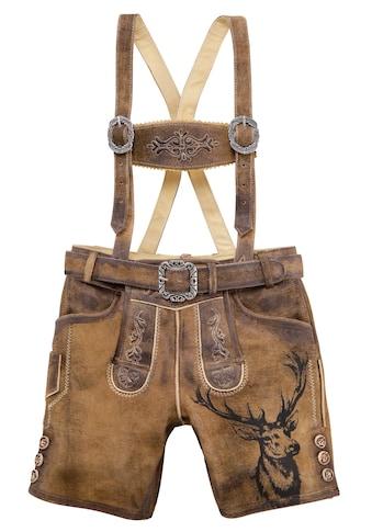 Country Line Trachtenlederhose, (3 tlg., mit Gürtel-mit Hosenträgern), Kinder mit Stickerei kaufen
