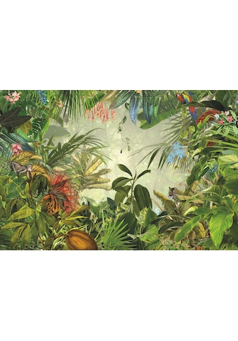 Komar Fototapete »Into the Wild« kaufen