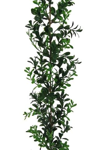 Creativ green Kunstgirlande »Buchsbaumgirlande« kaufen