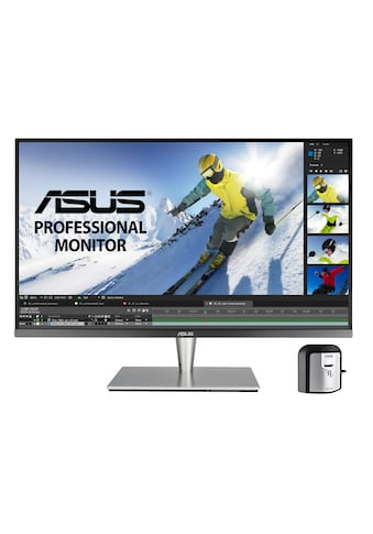 "Asus PA32UC - K Monitor »81,28 cm (32"") 4K - IPS - Monitor, 5 ms« kaufen"