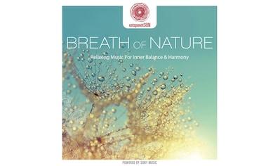 Musik-CD »entspanntSEIN-Breath of Nature (Relaxing Music F / Davy Jones« kaufen