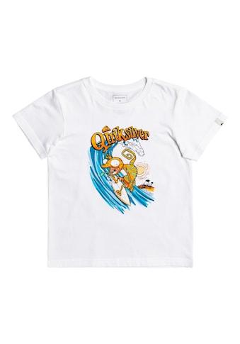 Quiksilver T-Shirt »Break The Fall« kaufen