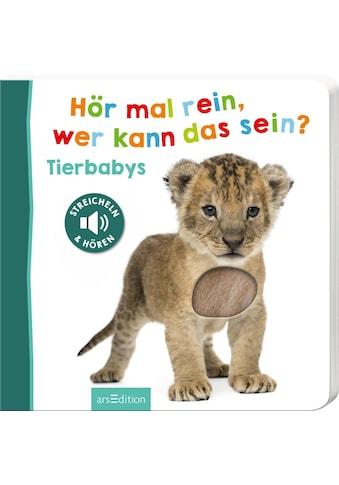 Buch »Hör mal rein, wer kann das sein? - Tierbabys / DIVERSE« kaufen