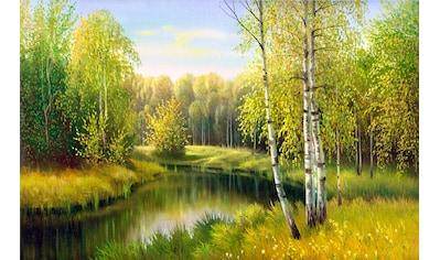 Papermoon Fototapete »River in Autumn Day« kaufen