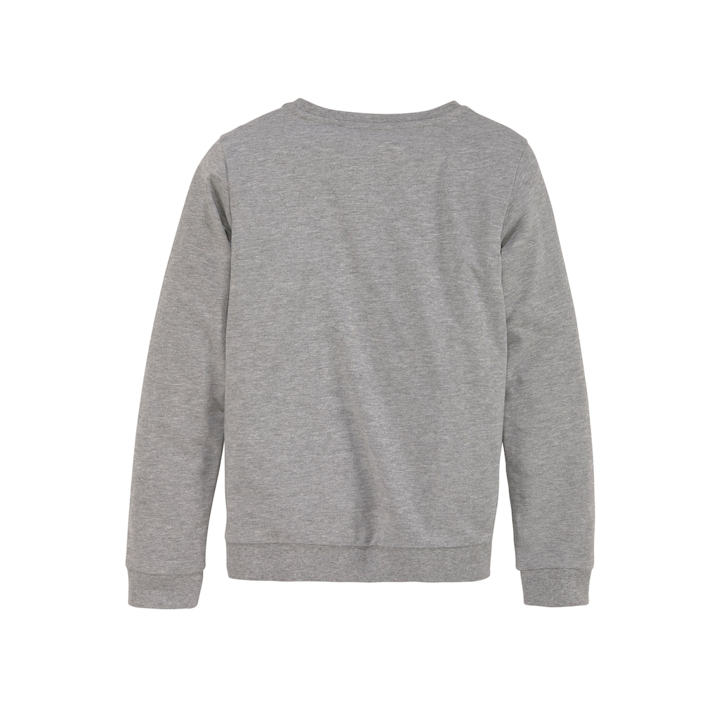Arizona Sweatshirt, in Basicform