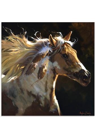 Artland Glasbild »Geisterpferd«, Haustiere, (1 St.) kaufen